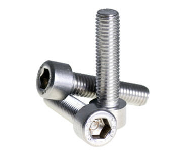 Stainless Steel 304L Bolts